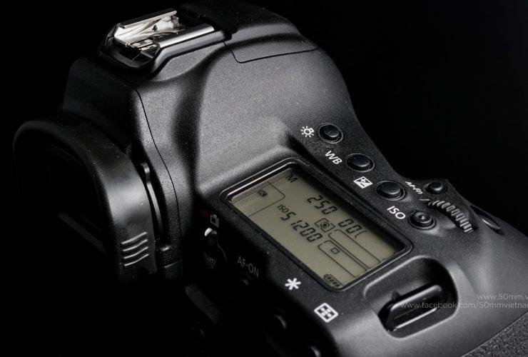 Ảnh thực tế từ Canon EOS 1DX Mark II ở các mức ISO | 50mm Vietnam