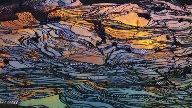 Giải thưởng International Photographer of the Year 2015   50mm Vietnam
