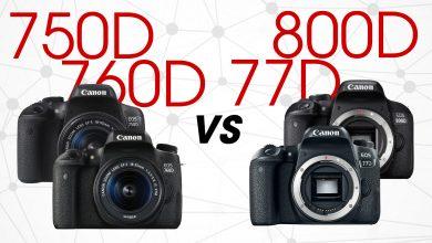 EOS 800D/77D và 750D/760D: Mèo nào cắn mỉu nào | 50mm Vietnam