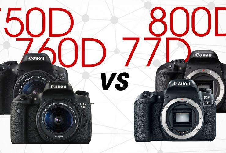 EOS 800D/77D và 750D/760D: Mèo nào cắn mỉu nào   50mm Vietnam