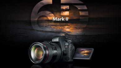 Bài test ISO giữa Canon EOS 6D Mark II, 5D mark IV và 6D | 50mm Vietnam