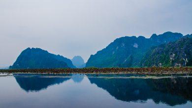 Cùng 50mm Việt Nam trải nghiệm Olympus ở Đầm Vân Long | 50mm Vietnam