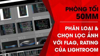 Phòng tối 50mm Tập 2 | 50mm Vietnam