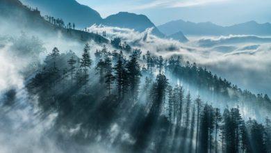 """Gặp gỡ """"bậc thầy'' nhiếp ảnh phong cảnh Andre Luu   50mm Vietnam"""