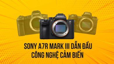 Sony A7RIII có Dynamic Range vượt trội so với Canon EOS R và Nikon Z7? | 50mm Vietnam