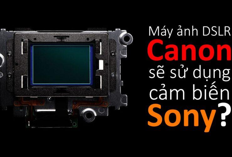 Canon sẽ dùng cảm biến Sony cho DSLR? | 50mm Vietnam