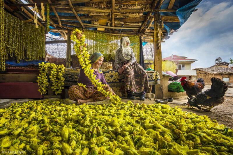 Những bức ảnh thắng giải Food Photographer of the Year 2021 | 50mm Vietnam